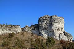 IMG_1759 (Joan van der Wereld) Tags: polishjurassicupland nature naturephotography landscape rock limestone hilly boulder poland south