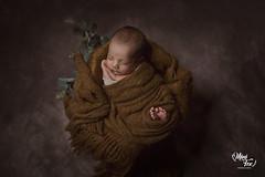 Mentoria personalizada de fotografía newborn (Lilia Pereira PH) Tags: newbornphotography newborn newbornphotographer newbornphoto newbornargentina newbornbaby nature babyphotography minifoxphotography minifox maternidad babypossing dulceespera baby