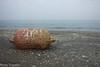 Boa (paolotrapella) Tags: boa spiaggia beach water acqua sabbia