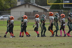 _DSC9197 (zombieduck2010) Tags: 2014 apple valley rattlers youth football san bernardino cowboys jr pee wee