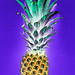 Aerial view of pineapple in negative filter blue background