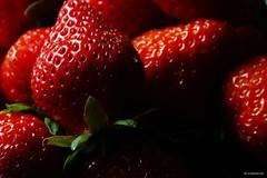 DSC04692 - 複製 (windcolor fan) Tags: c100l strawberry macro micro 微距 ef100mm cactusv6ii insect 580ii 草莓