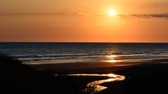Atardecer en Costa Ballena (.Guillermo.) Tags: paisaje lan landscape sunset atardecer playa beach mar sea cádiz andalucía spain cielo sky