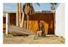 canoe (philippe*) Tags: saltonsea california desert decay abandoned saltonseadéc2010philou