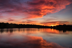 Tonight's sunset..... (Kevin Povenz Thanks for all the views and comments) Tags: 2018 may kevinpovenz westmichigan michigan maplewoodpark ottawa ottawacounty sunset sun clouds pond lake reflection evening dusk canon7dmarkii sigma1020 red orange blue