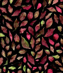 58901.01 Euonymus alatus (horticultural art) Tags: horticulturalart euonymusalatus euonymus leaves pattern mosaic fallleaves fallcolor