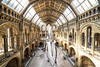Massive Entrance (mystero233) Tags: natural history museum whale skeleton london town city uk gb britain england hall entrance building architecture show roof space landscape indoor 2018 floor people long exposure wide angle