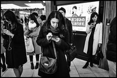Shinjuku Station, Shinjuku, Tōkyō-to (GioMagPhotographer) Tags: tōkyōto peoplegroup metrostation metro station night afterdark japanproject japan leicamonochrom subway tokyo tkyto underground