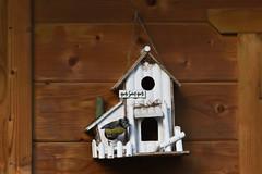 Home Sweet Home. (wimjee) Tags: nikond7200 nikon d7200 afsdx55200mmf456gvrii mees tit vogel bird pimpelmees bleutit 500px