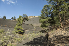 SedonaVacation_May2018-3240 (RobBixbyPhotography) Tags: arizona flagstaff sedona sunsetcrater vacation nationalmonument volcano travel