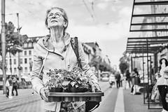 Mannheim Street Frau 524 b&w (rainerneumann831) Tags: bw blackwhite street streetscene ©rainerneumann urban monochrome candid city streetphotography blackandwhite frau mannheim