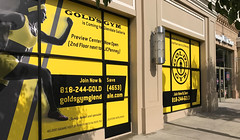 Retail, Golds Gym, Window Graphics