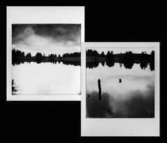 à l'envers (mariobattaglia) Tags: polaroid polaroidfilm impossible instantfilm impossibleproject film sx70 mariobattaglia