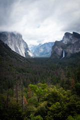 Tunnel Vision (Yaecker Photography) Tags: yosemite yosemitenationalpark tree trees mood moody fog clouds atmosphere nationalforest nationalpark park mountains landscape landscapephotography image sexy nudescape