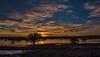Dusk at Fitzgerald Bay. (Nature Boy17) Tags: sunset fitzgeraldbay southaustralia mangroves