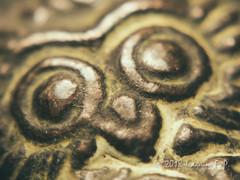Owl of Athena - Macro mondays theme: Circles (Joaquim F. P.) Tags: joaquimfp macromondays circles owl mochuelo athena atenea αθε panasonic fz300 closeup lens attachment mitología metal envejecido grecia greece aged greek mythology littleowl athenenoctua tetradracma souvenir bronce bronze