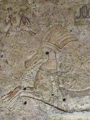 Chariot Horse, Tomb of Panhesy, Amarna (Aidan McRae Thomson) Tags: amarna tomb egypt ancient egyptian