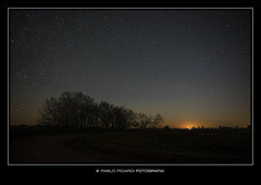 PIC_2400a (Pablo B. Picardi) Tags: fotosafari nocturnas pablopicardi nocturna