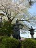 18o2740 (kimagurenote) Tags: 護国寺 gokokuji temple 桜 sakura prunus cerasus cherry blossom flower 東京都文京区 bunkyotokyo bunkyōtokyo