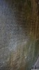 Ancient Sanskrit Inscriptions, Prasat Daem Chrei Temple, Sambor Prei Kuk (Travolution360) Tags: cambodia sambor prei kuk ancient sanskrit inscriptions prasat daem chrei temple history hinduism india chenla ruins bricks kampong thom tuktuk travel forest root tree