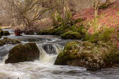Rumbling Bridge (ian_woodhead1) Tags: river devon rumbling bridge scotland kinross waterfall long exposure