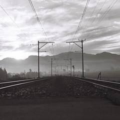 Train Tracks at Sunrise (Semjaja) Tags: blackandwhite blackandwhitephotography blackandwhitefilm rolleicordiv rollei tlr xenar3575mm xenar rolleiretro400s 120 mediumformat 6x6 filmlives film filmsnotdead filmphotography filmcamera ishootfilm shootfilm classiccamera paarl southafrica