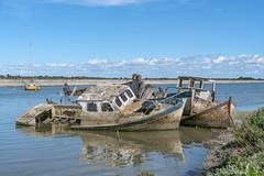 épave (Istvan SZEKANY) Tags: ã©pave noirmoutierenlîle cimetière bateau bateaux atlanticocean epave paysdelaloire france fr sonyalphaclub
