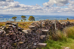 Throughs (scottprice16) Tags: england lancashire jeffreyhill longridgefell forestrycommission wall step through stone trees eastlancashire ribblevalley view outdoors summer midsummer hike walk trek path activity scenery 2018 june canon canoneos60d sigma sigma1750mmf28os