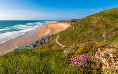 Paysage du Cotentin (Eric GILLARD | PiX) Tags: ericgillard pix barnevillecarteret normandie france fr cotentin mer plage dune fleurs sable