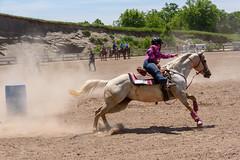 JBC_6449.jpg (Jim Babbage) Tags: krahc bethany appaloosa horses horseshow 2018