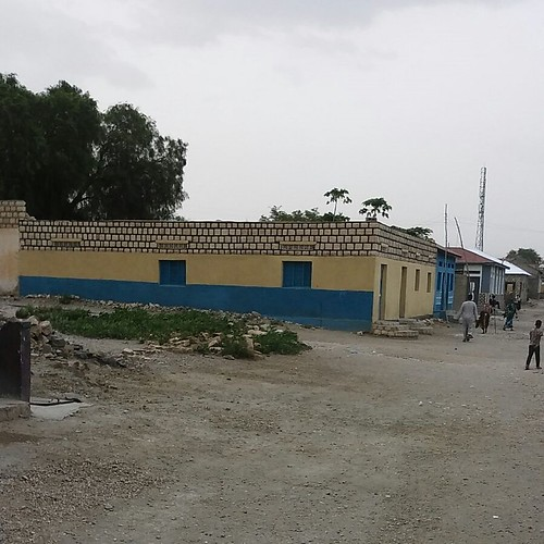 The house in Borama