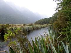 The Mirror Lakes.  S.I., NZ (jenichesney57) Tags: lake trees water mist reesa southisland newzealand atmosphere autumn view green white panasoniclumix mountains sky cloud tttttttttttt tttttttttttttttttttttttttttttttttttttttttttttttttttttttttttttttttttttttttttttttttttttttttttttttttttttttttttttttttttttttttrrrrrrrrrrrrrttttrtrrttrtrtrttrrtirtttttttttttttttttttttttttttttttttttttttttttttttttttttt