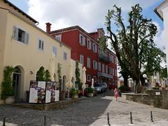 20180613-1027-p1010617 (Stefan Hundhammer) Tags: istrien istria kroatien croatia istrientour2018 panasonicgx80 panasonicgx85 panasonicleica15f17 mftprimes