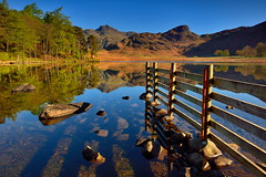 Fenced in (images@twiston) Tags: fencedin bleatarn langdales tarn first light calm fence golden hour sunrise dawn tree trees rocks stones reeds reflections tranquil mirror perfect boulders shore shoreline lake cumbria lakedistrict lakeland scenic thelakes lakedistrictnationalpark nationaltrust fell fells cumbrian mountains landscape imagestwiston district national park countryside mountain super still water reflection morning blue cloudless englishlakedistrict lakes thelakedistrict reflected waterreflections serene stupidoclock wideangle sidepike lingmoorfell pikeoblisco pikes greatlangdale littlelangdale graduated pine scotts unesco worldheritagesite friday happy hff