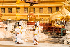 Myanmar-20180324-1229 (ShaneAndRobbie) Tags: nyaungu mandalayregion myanmarburma mm myanmar burma bagan shwezigonpaya shwezigon pagoda shinbyu novitiation ceremony