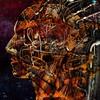 Adam (revisited) (Vincent Mattina (aka FLUX)) Tags: machine man mechnical robot computer hybrid android anatomical head singularity adam