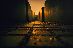 Light Perpetual (fehlfarben_bine) Tags: nikond800 nikon2401200mm sunrise perspective holocaustmemorial berlin streetphotography goldenlight cityscape lowpov