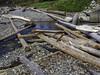 Rain and wind evidence (Tony Tomlin) Tags: whiterockbc britishcolumbia canada driftwood whiterockbeach logs