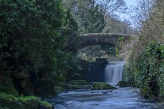 Jesmond Dene, Newcastle, UK. (Mark240590) Tags: jesmond waterfall leefilters lee longexposure longexpo newcastle