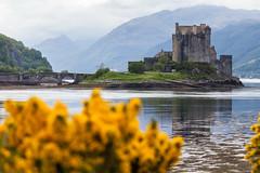 Forever on Guard (B.M. Dodson) Tags: castle scotland scottish skye low tide reflection highlands bridge mountains dof uk british