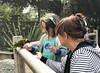 Luna And Babcia And A Lorikeet (evaxebra) Tags: luna lorikeet lorikeets bird birds babcia bozena feed feeding nectar