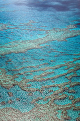 More water! (LynxDaemon) Tags: reef barrier australia water nature abstract shadows turquoise ocean pacific wonder natural sea great coral blue azure land island lines whitsundays travel