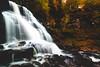 Erie Falls (Robert E Dawson Jr) Tags: waterfall water fall autumn forest long exposure ricketts glen stream hike hiking woods tree trees pennsylvania pa wide angle 12mm laowa nikon d810 landscape rocks