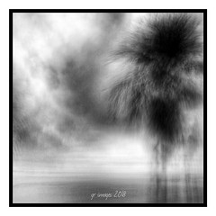Good Night my Flickr Friends (GR167) Tags: floridakeys iphoneography iphone8plus landscape bw iphoneart monochrome iphone slowshutter