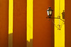 La lumière joue du jaune (woolgarphilippe) Tags: luz light lumière ombres shadows ombre shadow wall mur pared morning matin manana jaune amarillo yellow lampe lamp mexique mexico miguel