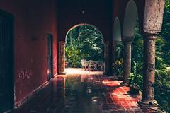En los secretos de las Haciendas (julien.ginefri) Tags: mexico méxico america latinamerica yucatán yucatan hacienda sanpedrochimay garden jardin