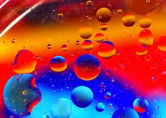 Macro Mondays - Circles (zendt66) Tags: zendt66 zendt nikon d7200 nikkor 60mm macromondays macro mondays circles olive oil water fabric