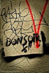 """Good night"" the Beatles (instrumental version). (Pascal Rey Photographies) Tags: croixrousse xrousse lyon lugdunum aurora aurorahdr luminar streetart streetphotography inthestreets strasse strassen via danslesrues rues calle urbanart urbanphotography urbaines urbaine urbex tags graffitis graffs graffik graffiti popart pop pochoirs stencils stencil pastedpaper sprayart spray arturbain art artcontemporain artabstrait artgraphique artmoderne walls wallpaintings walldrawings peinturesmurales peinturesurbaines fresquesmurales fresquesurbaines pascalreyphotographies photographiecontemporaine photos photographie photography photograffik photographiedigitale photographienumérique photographieurbaine pascalrey nikon skylum palimpsestes"