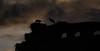 Siluetas en la sombra (Rafa perena) Tags: sombras contraluz nubes cielos atardecer nature paisaje landscapes scenery d7100 70300 nikon