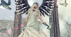 Heaven (Ύαℓα (Yalafaeli resident)) Tags: hair fabia gacha lila tcf event outfit dress necklace hat wings vipscreations cityofangel swankevent tattoo white~widow gemini blackfair angel heaven